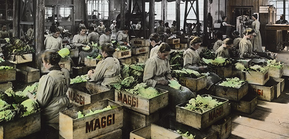 Maggi production